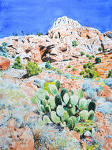 Prickly Pear, Zion NP