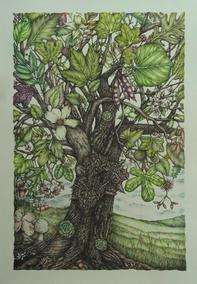 "Carol Moore | ""The Everything Tree"""