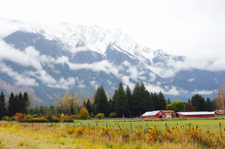 Our home in Pemberton, BC