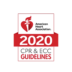 2020 Guidelines Logo_0.png