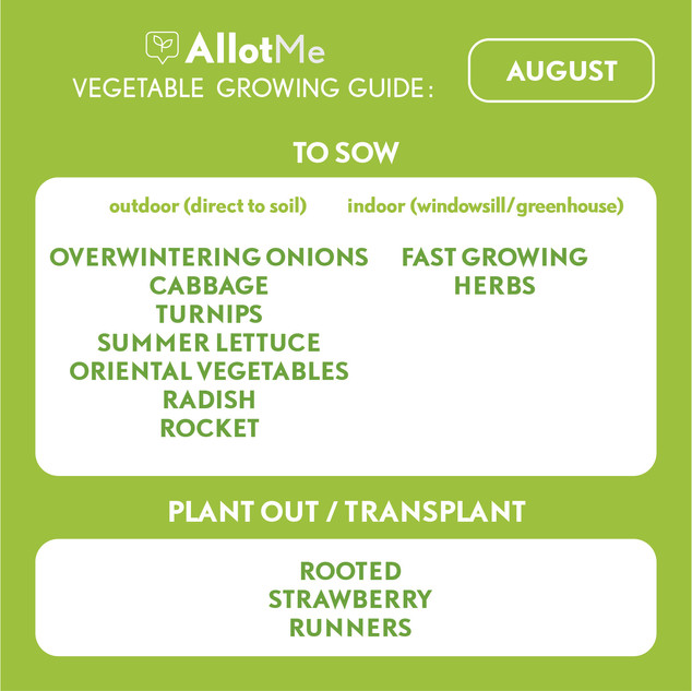 AllotMe GrowGuide - August.jpg