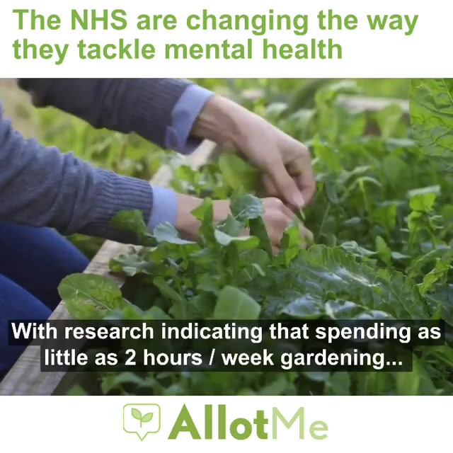 Gardening and mental health 🌱  #nhs #me