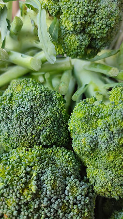 How to Grow Broccoli