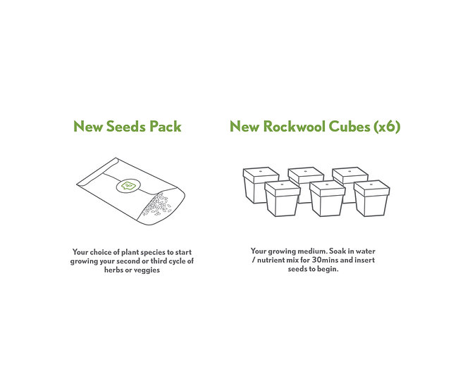 Seed Refill Pack