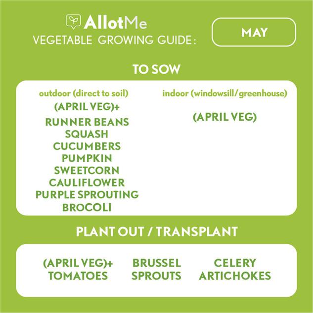 AllotMe GrowGuide - May.jpg