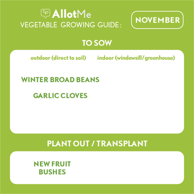 AllotMe GrowGuide - November.jpg