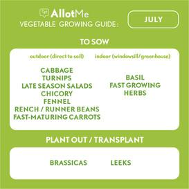 AllotMe GrowGuide - July.jpg