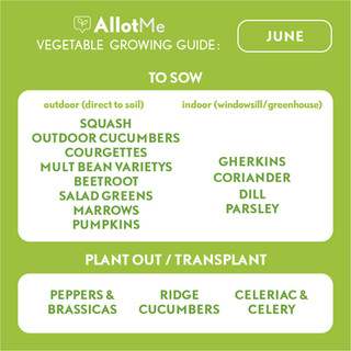 AllotMe GrowGuide - June.jpg