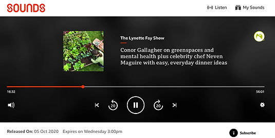 AllotMe founder Conor Gallagher on BBC Radio Ulster with Lynette Fay
