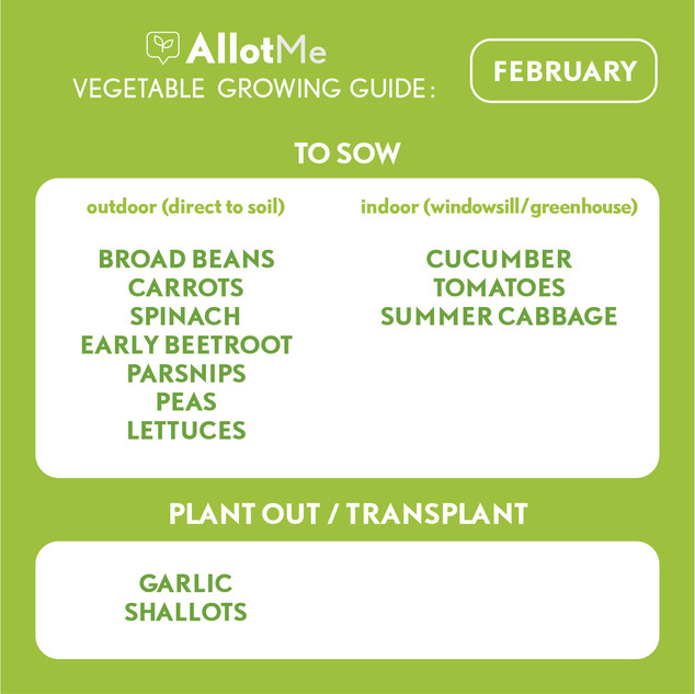 AllotMe GrowGuide - Feb.jpg