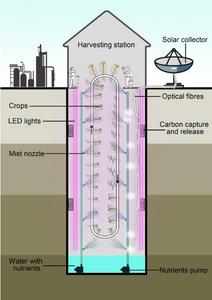 AllotMe underground aeroponics