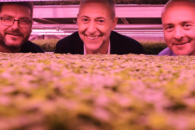 AllotMe Growing Underground Michael Roux Jnr