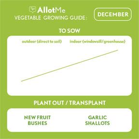 AllotMe GrowGuide - December.jpg