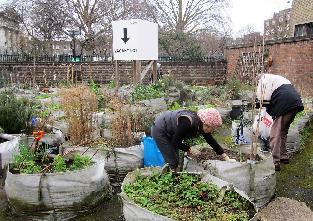 AllotMe Case Study: Vacant Lot, London. Community Garden / Allotment. Urban Agriculture