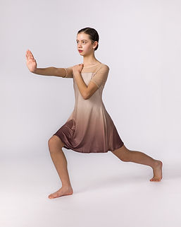 2019-5-18-Chicago-ballet-arts0737-Edit.j