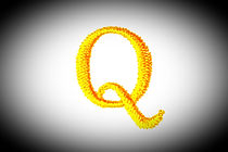 Embroidery Designs alphabet Q isolate on