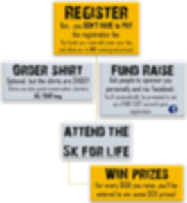 Fundraise FREE and WIN graphic.png