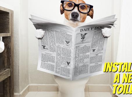 DIY Tip: Installing a New Toilet