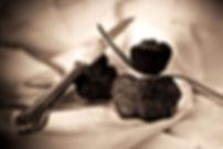 chambre d'hote truffe noire du perigord