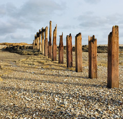 Medmerry Beach ancient relics to be found