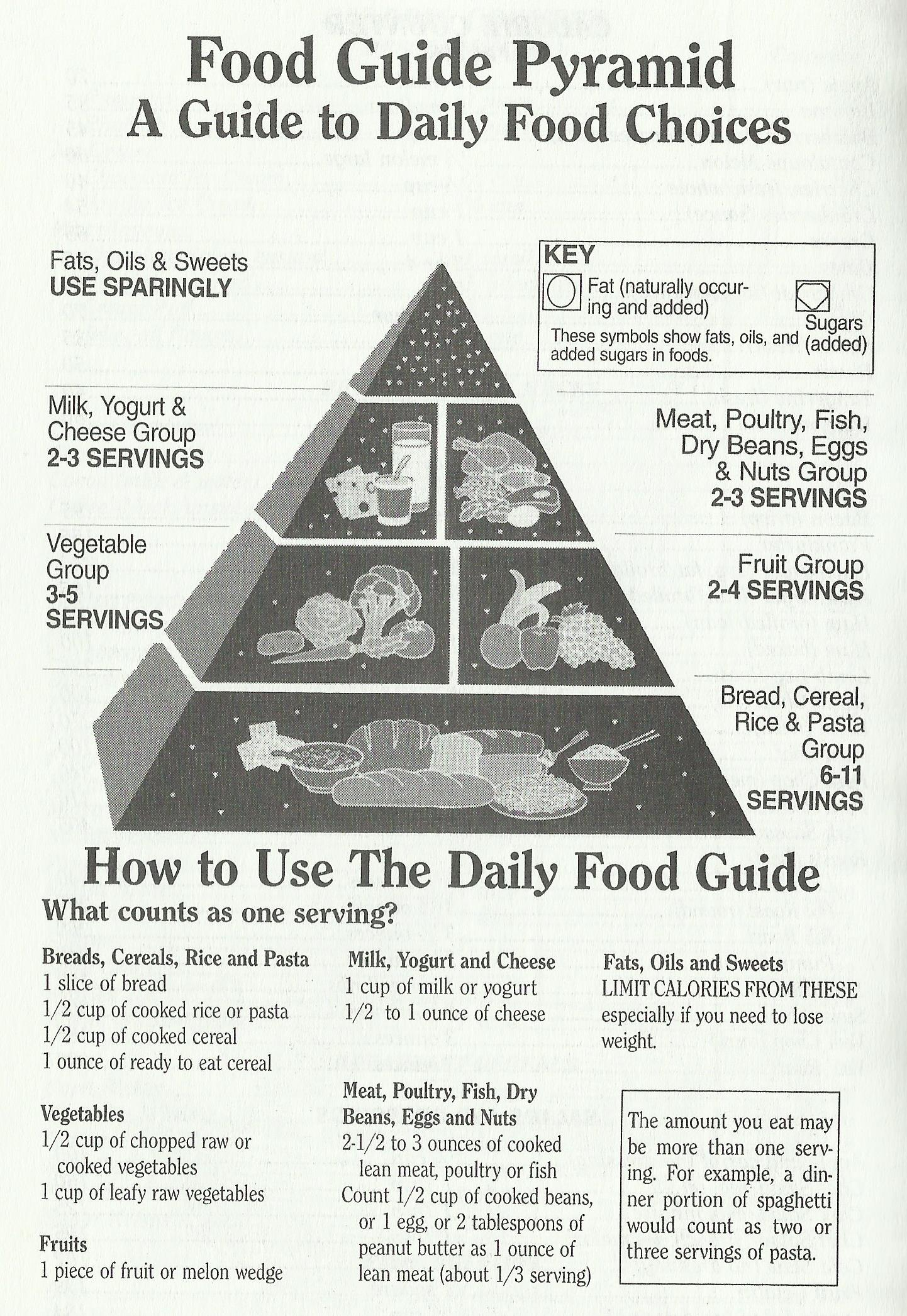 Food Guide Pyramid-A Guide to Daily Food