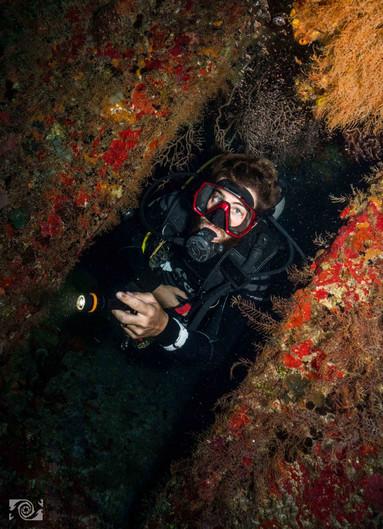 colours diving.jpg