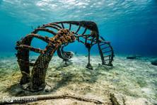 breath ocean drift.jpg