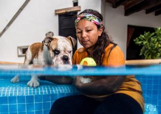 dogs portrait.playa del carmen.jpg