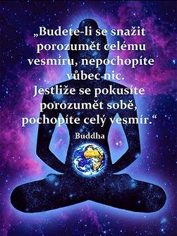 BuddhaQuote.jpeg