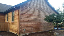 Stain Stripped House