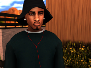 Ebonix   Dr. Dre Beats In-Ear Headphones