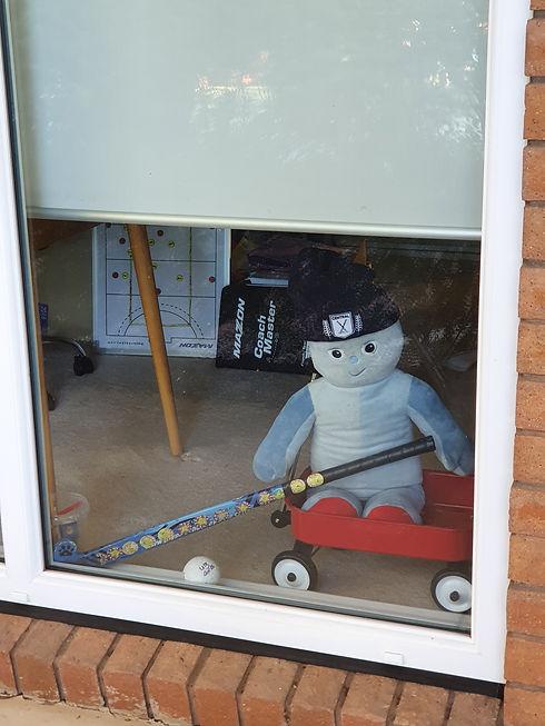 Central Teddy in the Window.jpg