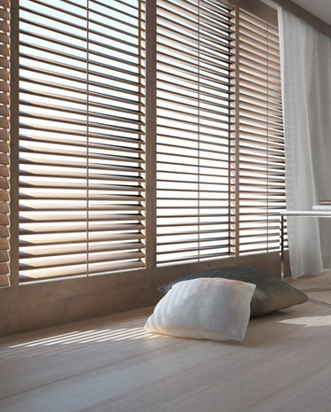 Premium Window Blinds