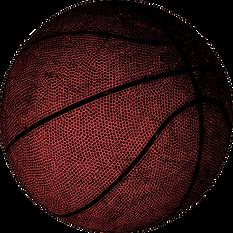 basketball, professional basketball player Samuel Deguara, Samuel Deguara, playing style