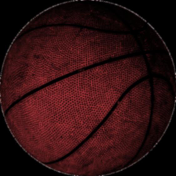 Mercyhurst Prep Boys Basketball
