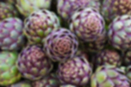 Artichokes for our latest event Water Blues?