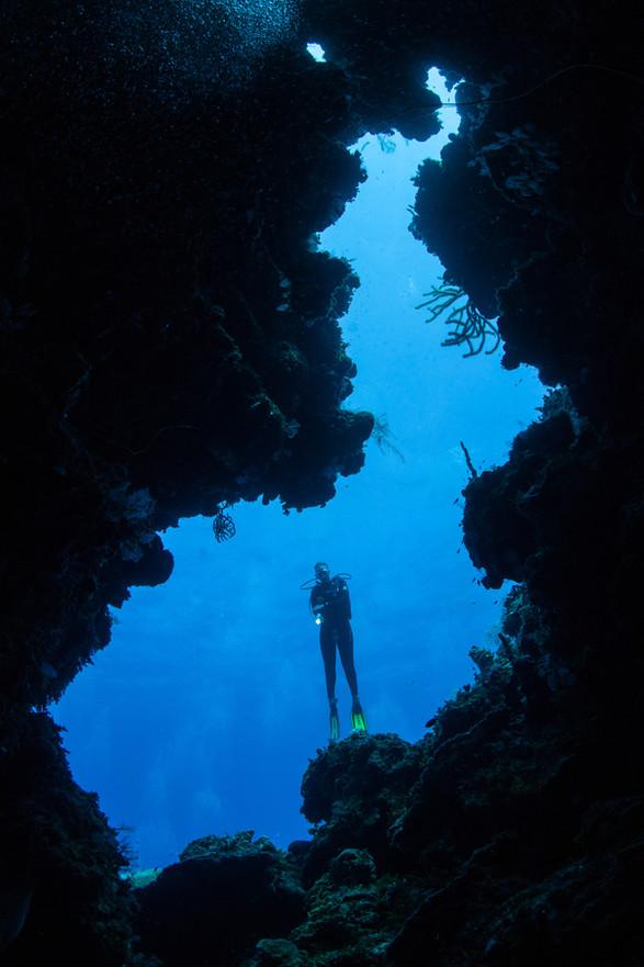 Scuba diver between corals