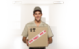 sameday courier driver schofields