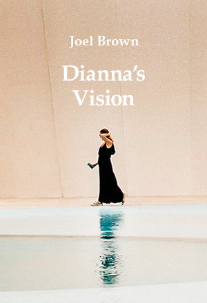 DIANNA'S VISION