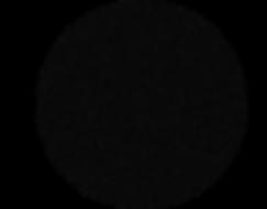 Black circle on homepage