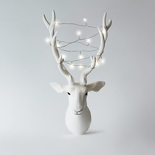 White reindeer with christmas lights on antlers