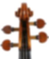String Quartet Sussex Berkshire London Violin