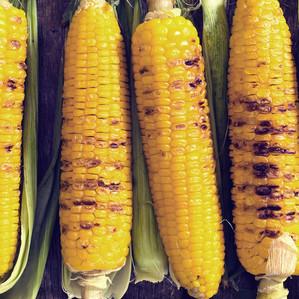 Southern Maryland Sweet Corn