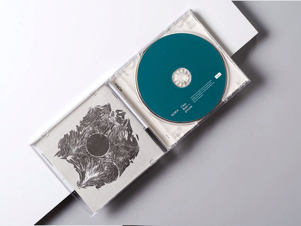 Open Disc Cover