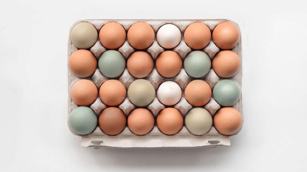 24 Organic Eggs