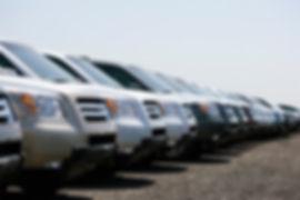 Aan aantal SUV auto's die allemaal exact naast elkaar in dezelfde richting geparkeerd staan op een parking. Enkel de voorkant is zichtbaar maar geen merk of logo.