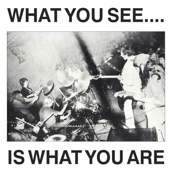 Alternative TV, What You See... is what you are, 1978