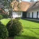 taxusbollen, tuinontwerp, van der rhee, outdoor design