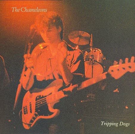 the Chameleons - Tripping Dogs (1990)