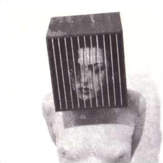 Die Form, Rose au Cœur Violet, 1994